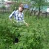 юлия, Россия, Эртиль. Фотография 14489