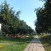 константин, Россия, Тейково. Фотография 243531