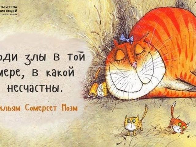 Кошка в кедахХ, Россия, Санкт-Петербург, 39 лет, 2 ребенка. Хочу найти Друзей, а если повезет, то и любовь.