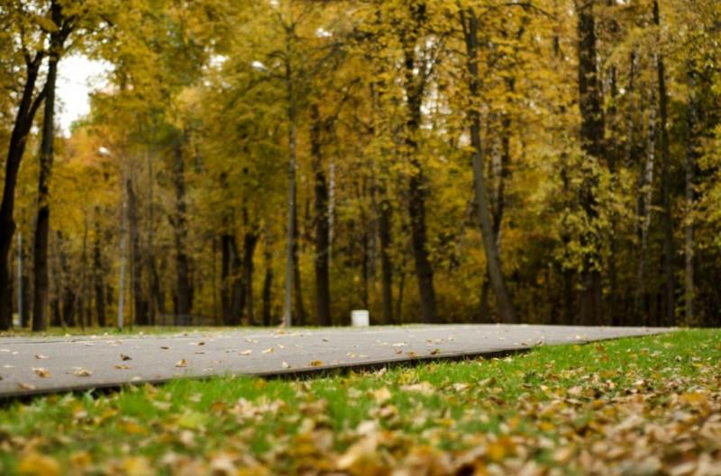 Московская осень. Фотопрогулка