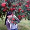 наталья, Россия, Новокузнецк, 37 лет, 1 ребенок. Хочу познакомиться с мужчиной