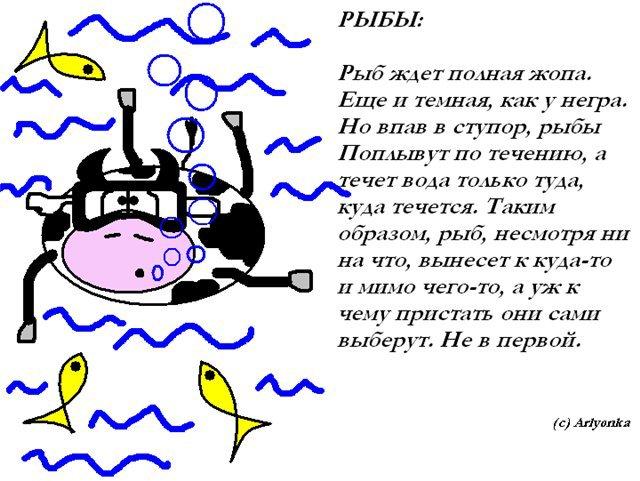 На что способны рождённые под знаком рыбы