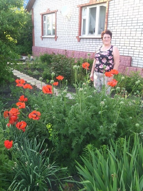 Елена, Россия, Белгород, 54 года