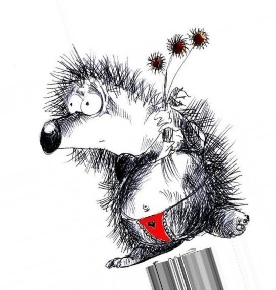 Картинка нарисованного забавного ежика