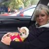 Елена, Россия, Москва, 50 лет