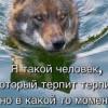 Den (Москва, м. Новые Черёмушки)
