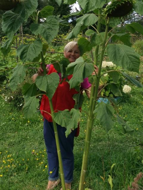 Ольга, Россия, Липецк, 42 года, 2 ребенка. Хочу найти Вторую половину.