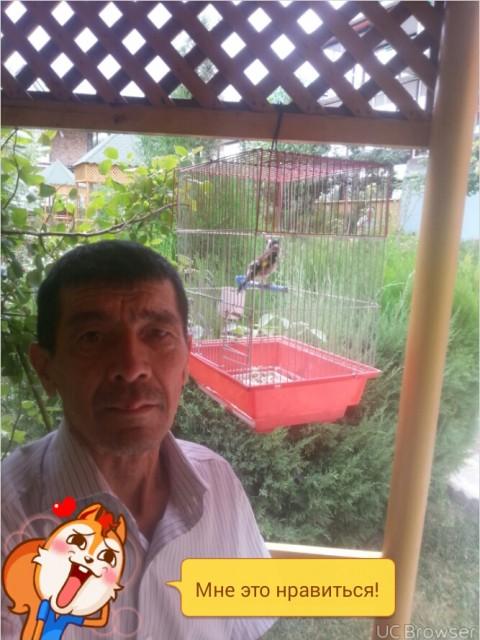 Алик, Россия, Новая Усмань, 63 года