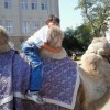Александр, Россия, Иркутск, 55 лет, 2 ребенка. Хочу найти Милую, симпатичную женщину с юмором.
