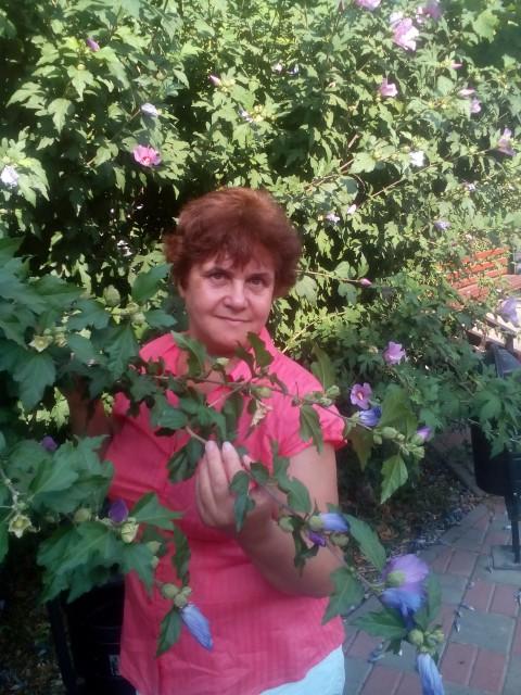 Надежда, Россия, Анапа, 55 лет