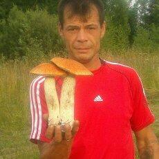 анрей зайцев, Россия, Кострома, 43 года