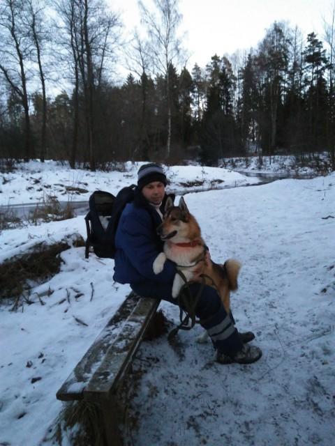 Юрий, Россия, Покров, 37 лет