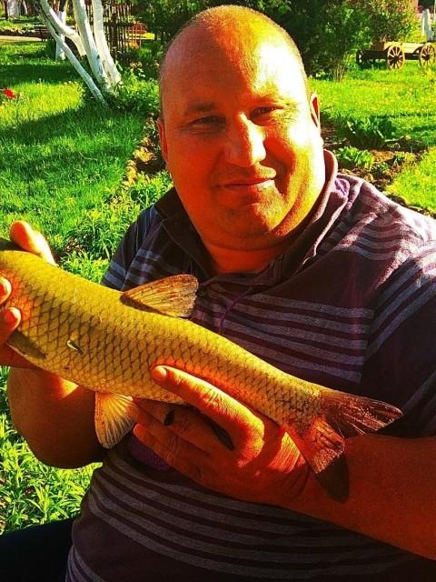 Сергей, Беларусь, Минск, 47 лет