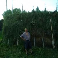 Kollin, Россия, Троицко-Печорск, 48 лет