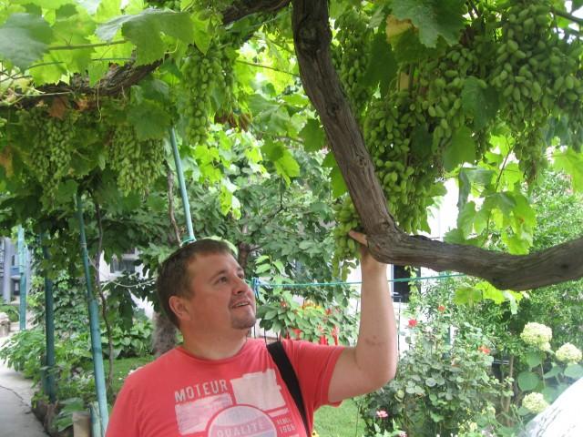 Дмитрий, Россия, Ступино, 41 год