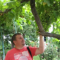 Дмитрий, Россия, Ступино, 43 года