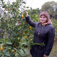 Светлана, Россия, Новокуйбышевск, 48 лет