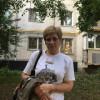 Елена, Россия, Москва, 45 лет, 2 ребенка. Хочу найти Надежного, сильного духом, честного и доброго.