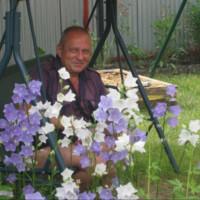 Виктор, Россия, Тула, 60 лет