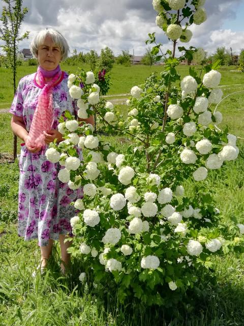 ИРИНА, Россия, Тихорецк, 57 лет