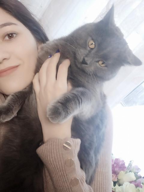 Николь, Россия, Красноярск, 26 лет. Хочу найти Доброго, любящего животных, надежного, заботливого мужчину не старше 40 лет! К слабостям вроде вредн