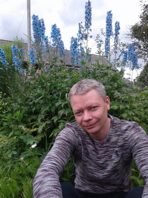 Денис, Россия, Кострома, 37 лет