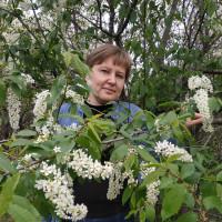 Татьяна, Россия, Курск, 40 лет