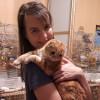 Виктория, Россия, Новосибирск, 31 год. Она ищет его: Доброго, воспитанного, с чувством юмора. И да, желательно выше меня (рост у меня хороший))