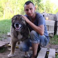 Никита Колесников, Россия, Нижний Новгород, 27 лет