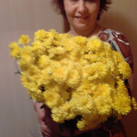 Лариса, Россия, Владимир, 46 лет